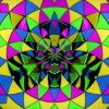 Circus-Pattern-LIMEART-Z3-Short_1_001 VJ Loops Farm - Video Loops & VJ Clips