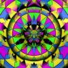 Circus-Pattern-LIMEART-Z3-Short_1_009 VJ Loops Farm - Video Loops & VJ Clips