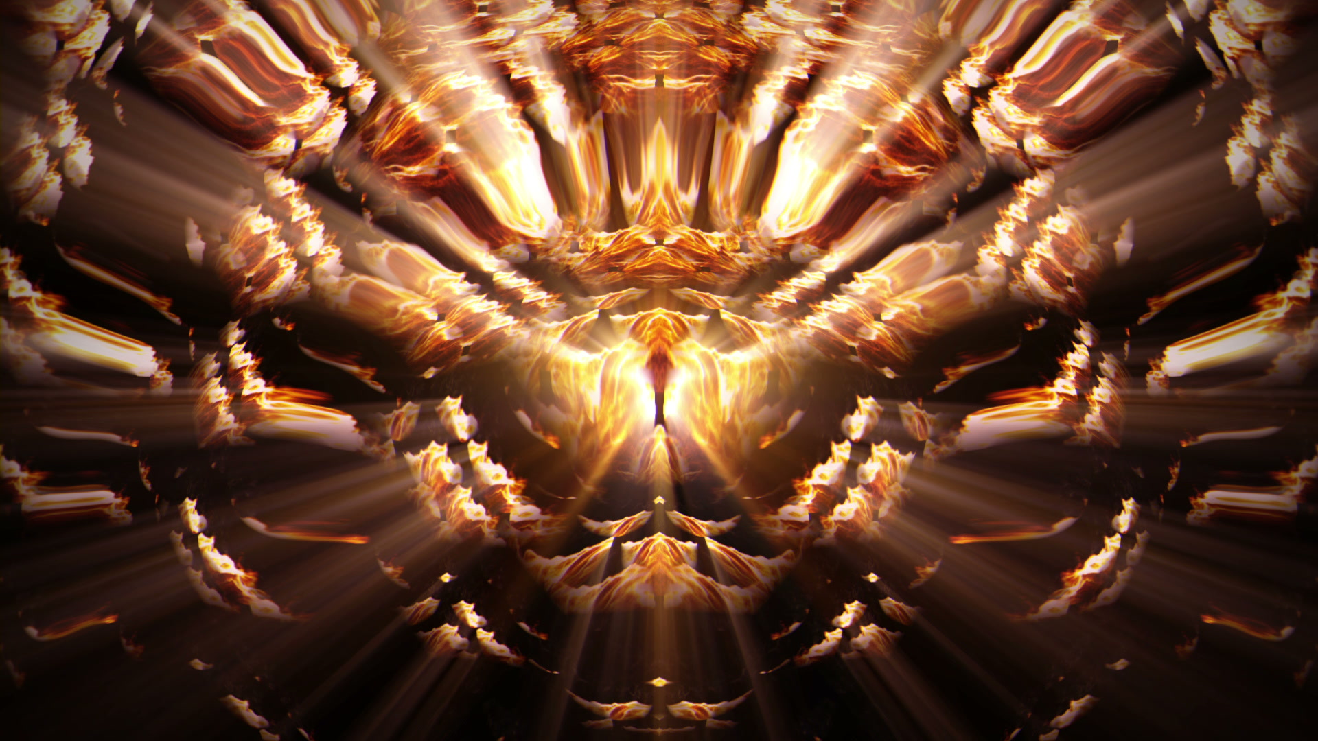 vj video background Fire-Fox-Wall-LIMEART-VJ-Loop_003