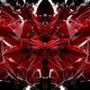 FoilBlack-2-Cyber-Pussy_1-LIMEART_008 VJ Loops Farm - Video Loops & VJ Clips