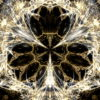 Gilded-Roots-Neocortex-Gothic-Leaf-Vj-Loop-LIMEART_005 VJ Loops Farm - Video Loops & VJ Clips