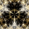 Gilded-Roots-Neocortex-Gothic-Leaf-Vj-Loop-LIMEART_007 VJ Loops Farm - Video Loops & VJ Clips