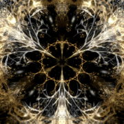 Gilded-Roots-Neocortex-Gothic-Leaf-Vj-Loop-LIMEART_008 VJ Loops Farm - Video Loops & VJ Clips