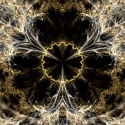 Gilded-Roots-Neocortex-Gothic-Leaf-Vj-Loop-LIMEART_009 VJ Loops Farm - Video Loops & VJ Clips