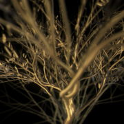Gilded-Tree-LIMEART-VJ-Loop_001 VJ Loops Farm - Video Loops & VJ Clips
