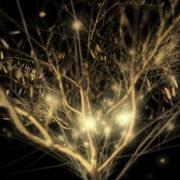 Gilded-Tree-LIMEART-VJ-Loop_002 VJ Loops Farm - Video Loops & VJ Clips