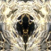 Gold-Kokon-Full-HD-LIMEART-VJ-Loop-17_007 VJ Loops Farm - Video Loops & VJ Clips