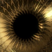 Gold-Ring-Vj-Loop-LIMEART_006 VJ Loops Farm - Video Loops & VJ Clips
