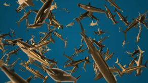 vj video background Gold-Sharks-VJ-Loop-LIMEART_003