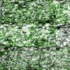Green-Background-LIMEART-VJ-Loop VJ Loops Farm - Video Loops & VJ Clips