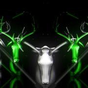 Green-Deer-Vj-Loop-LIMEART-FullHD_1_008 VJ Loops Farm - Video Loops & VJ Clips
