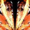 Light-Wings-HD-LIMEART_002 VJ Loops Farm - Video Loops & VJ Clips
