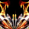 Light-Wings-HD-LIMEART_004 VJ Loops Farm - Video Loops & VJ Clips