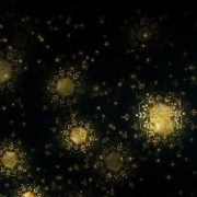 Gold-Snowflakes-Rain-VJ-Loop-LIMEART_009 VJ Loops Farm - Video Loops & VJ Clips