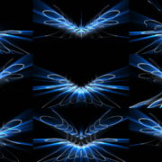 Line-Wings-Vj-Loop-LIMEART VJ Loops Farm - Video Loops & VJ Clips