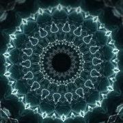 Whale-Flower-Kaleido-LIMEART-VJ-Loop-FullHD_001 VJ Loops Farm - Video Loops & VJ Clips