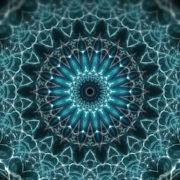 Whale-Flower-Kaleido-LIMEART-VJ-Loop-FullHD_005 VJ Loops Farm - Video Loops & VJ Clips