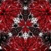 Black-Foil-Update-Remix-1_1920x1080_29fps_VJLoop_LIMEART_002 VJ Loops Farm