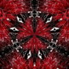 Black-Foil-Update-Remix-1_1920x1080_29fps_VJLoop_LIMEART_007 VJ Loops Farm