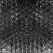 Black-Foil-Update-Remix-3_1920x1080_29fps_VJLoop_LIMEART_009 VJ Loops Farm