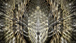 vj video background Gilded-Roots-Fine-Arts_1920x1080_60fps_VJLoop_LIMEART_003