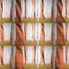Russian-Birch-Tree-whith-a-flag_1920x1080_29fps_VJ_Loop_LIMEART VJ Loops Farm