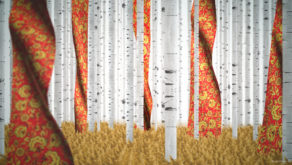 vj video background Russian-Birch-Tree-whith-a-flag_1920x1080_29fps_VJ_Loop_LIMEART_003