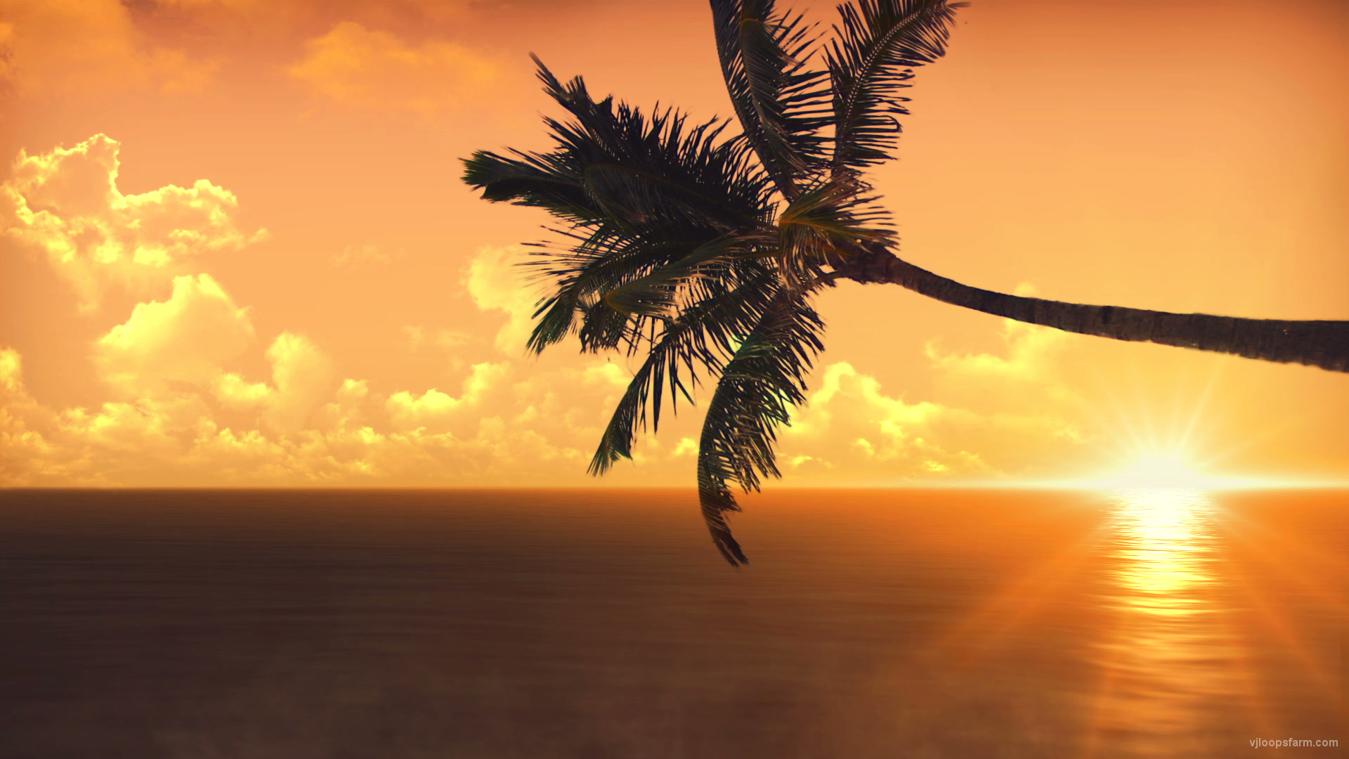 vj video background Sunset_1920x1080_29fps_VJ_Loop_LIMEART_003