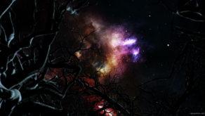 vj video background Tree2_1920x1080_29fps_VJ_Loop_LIMEART-1_003