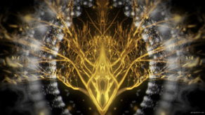vj video background Gilded-Roots-Tree-Mirror-2_003