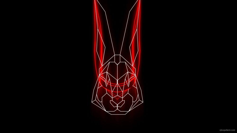 vj video background Rabbit-Vita-Beats-VJ-Loop-NEKTARDIGITAL-4_003