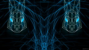 vj video background Rabbit-Vita-Beats-VJ-Loop-NEKTARDIGITAL-6_003