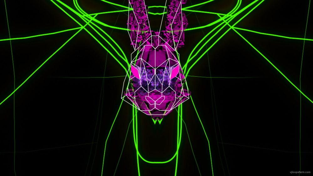 vj video background Rabbit-Vita-Beats-VJ-Loop-NEKTARDIGITAL-7_003