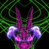 Rabbit-Vita-Beats-VJ-Loop-NEKTARDIGITAL-7_008 VJ Loops Farm