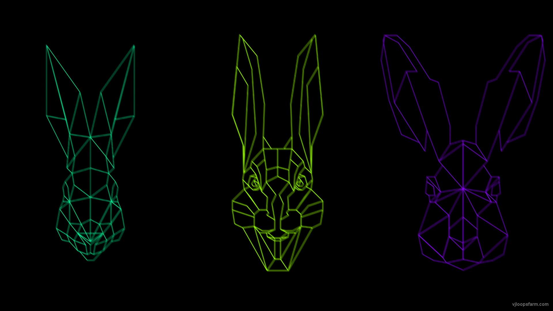 vj video background Rabbit-Vita-VJ-Loop-NEKTARDIGITAL-3_003