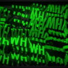 Why-Displace-Text-Word_006 VJ Loops Farm