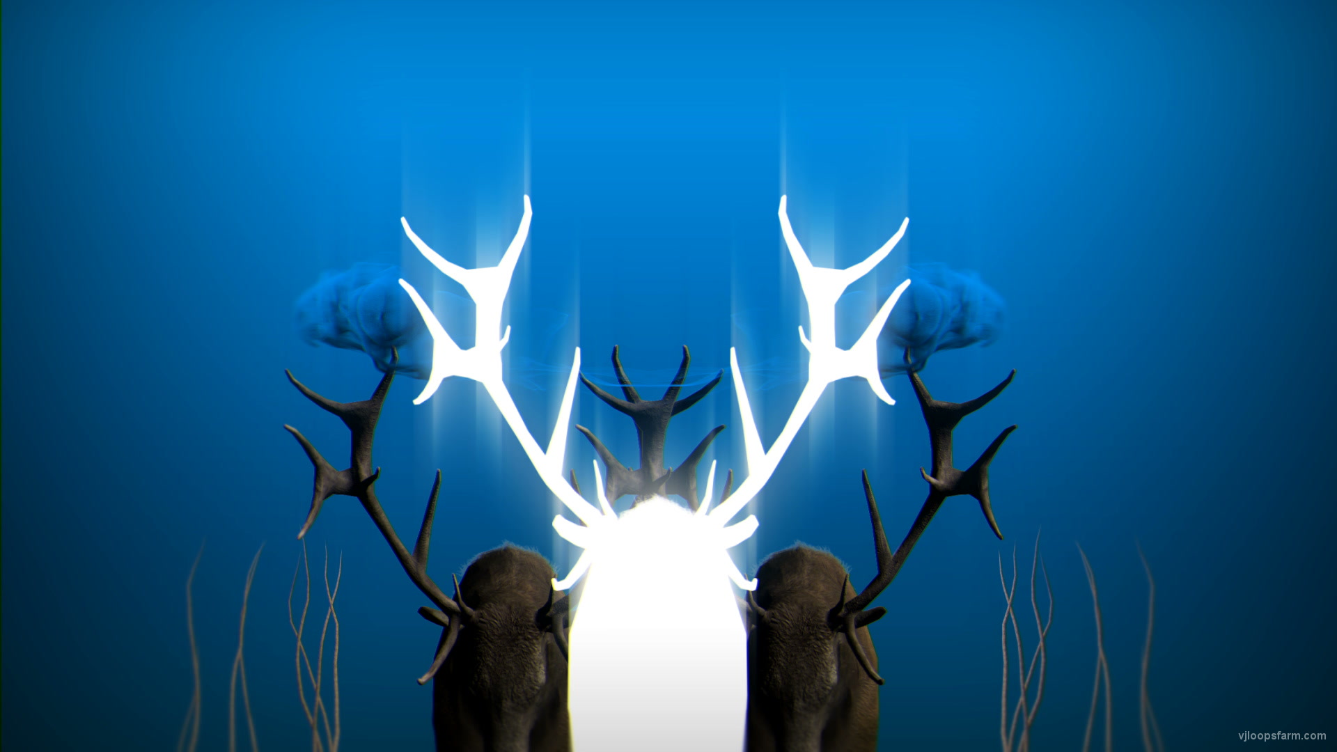 vj video background EDM-Stag-Blue-Beats-Deer-VJ-Loop-LIMEART_003