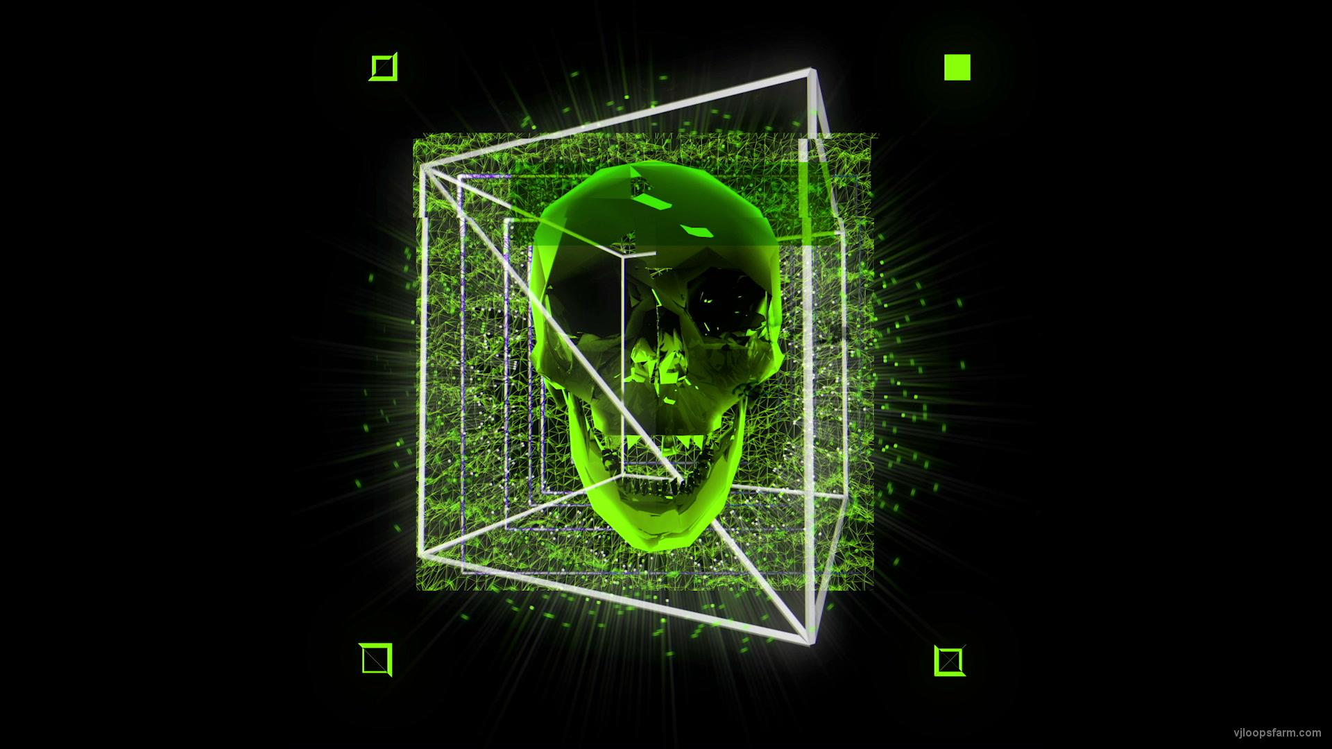 vj video background Green-Skull-in-cuboid-animation-effect-on-black-motion-background-vj-loop_003