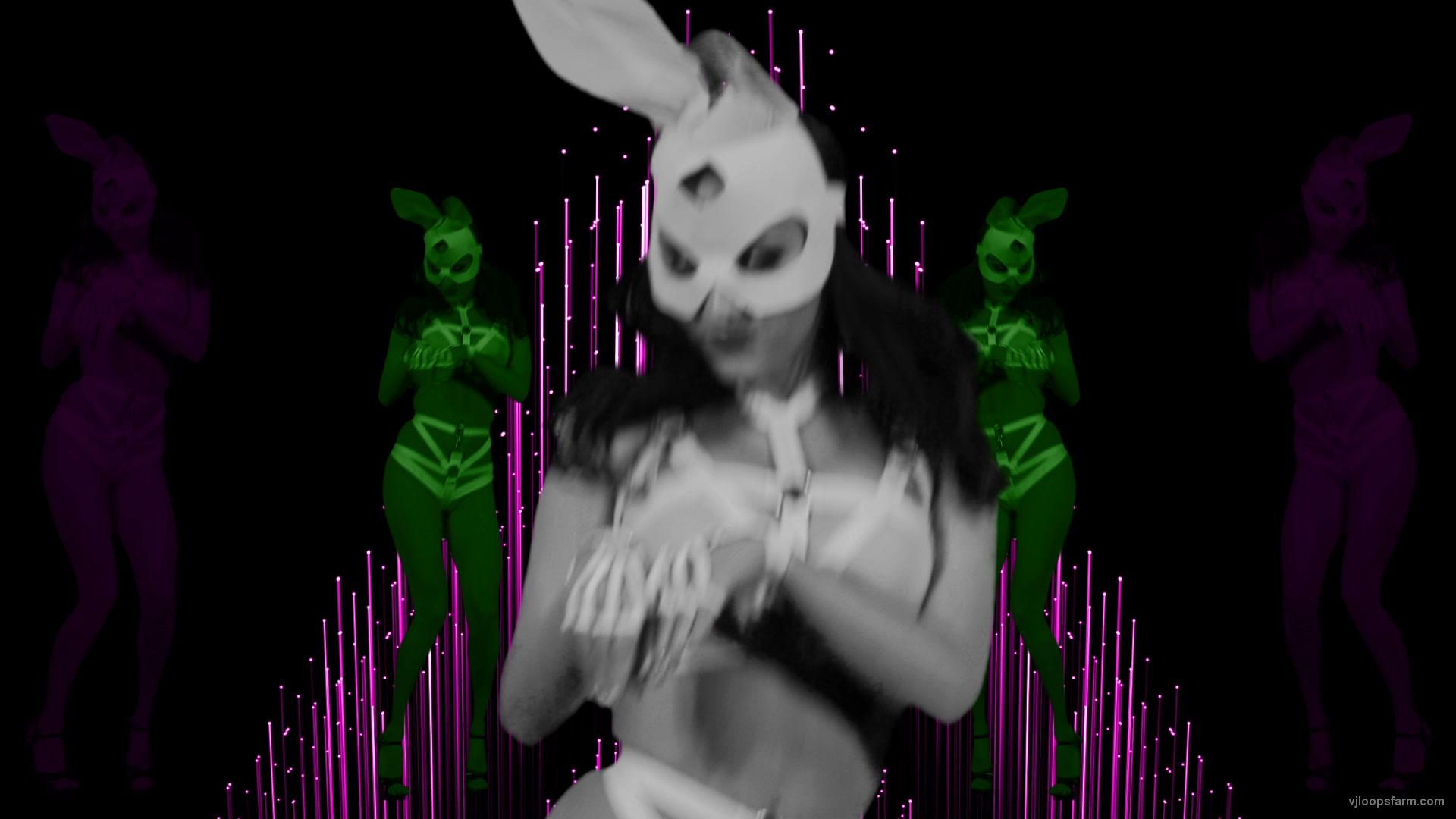 vj video background Multi-Rabbit-costumed-cute-woman-dancing-in-strobing-background-LIMEART-VJ-Loop_003