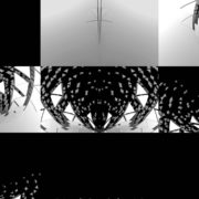 Gate-Portal-Wings-with-displace-effect-video-art-vj-loop-transition-for-3d-mapping VJ Loops Farm