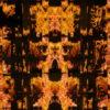 Eternal-flame-Memory-gate-lights-VA-Video-Art-VJ-Loop VJ Loops Farm