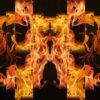 Eternal-flame-Memory-gate-lights-VA-Video-Art-VJ-Loop_005 VJ Loops Farm