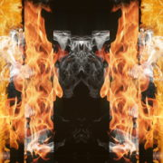 Eternal-flame-Stripe-line-gate-lights-VA-Video-Art-VJ-Loop_005 VJ Loops Farm