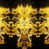 Fire-Pattern-Visuals-Video-Art-Motion-Background-Video-Art-VJ-Loop_001 VJ Loops Farm