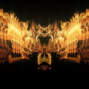 Golden-Phoenix-Fire-Flame-Video-Art-VJ-Loop_007 VJ Loops Farm