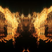 Golden-Phoenix-Fire-Flame-Video-Art-VJ-Loop_008 VJ Loops Farm