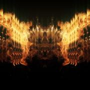 Golden-Phoenix-Fire-Flame-Video-Art-VJ-Loop_009 VJ Loops Farm