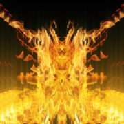 Golden-Phoenix-Fire-Gatee-Flame-Visuals-Video-Art-VJ-Loop_002 VJ Loops Farm