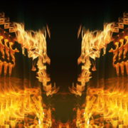 Golden-Phoenix-Fire-Gatee-Flame-Visuals-Video-Art-VJ-Loop_004 VJ Loops Farm