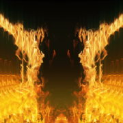 Golden-Phoenix-Fire-Gatee-Flame-Visuals-Video-Art-VJ-Loop_008 VJ Loops Farm